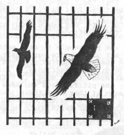Prison_Bulldozer_Eagles